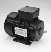 R349A, 50-37 Hp,1800 Rpm, 225S FR, 230/460 V, 3 PH, TEFC,