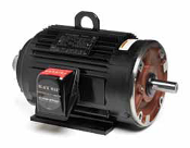 Y564, 5 Hp, 1800 Rpm, 184TC FR, 230/460 Vac, 3 Ph, TENV, C-Face